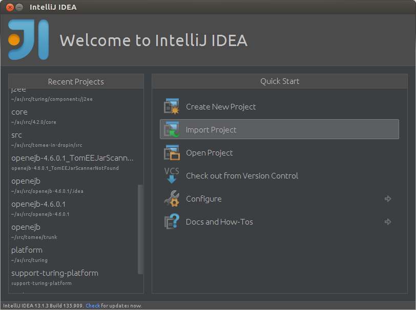 Debugging in Intellij